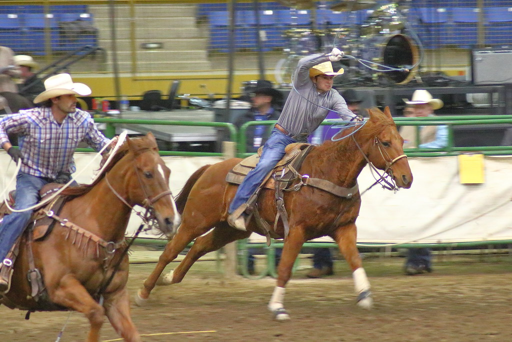 Roping Roping At The Rodeo All Star Semi Finals In
