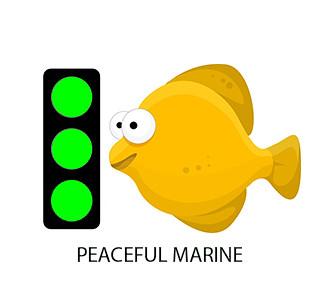 community marine