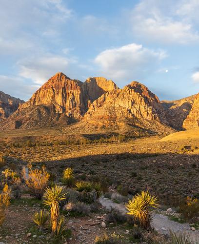 redrockcanyon sunrise desert bluediamond nevada unitedstatesofamerica us