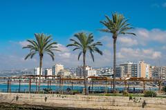 18 Marzo 2019 - Sidone