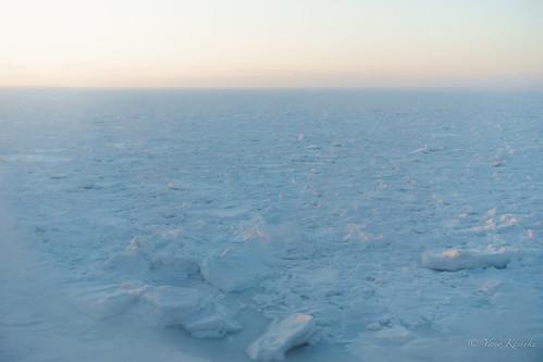 driftice 流氷 hokkaido 北海道 japan 日本 shari 斜里 seaofokhotsk オホーツク海 夕景 dusk