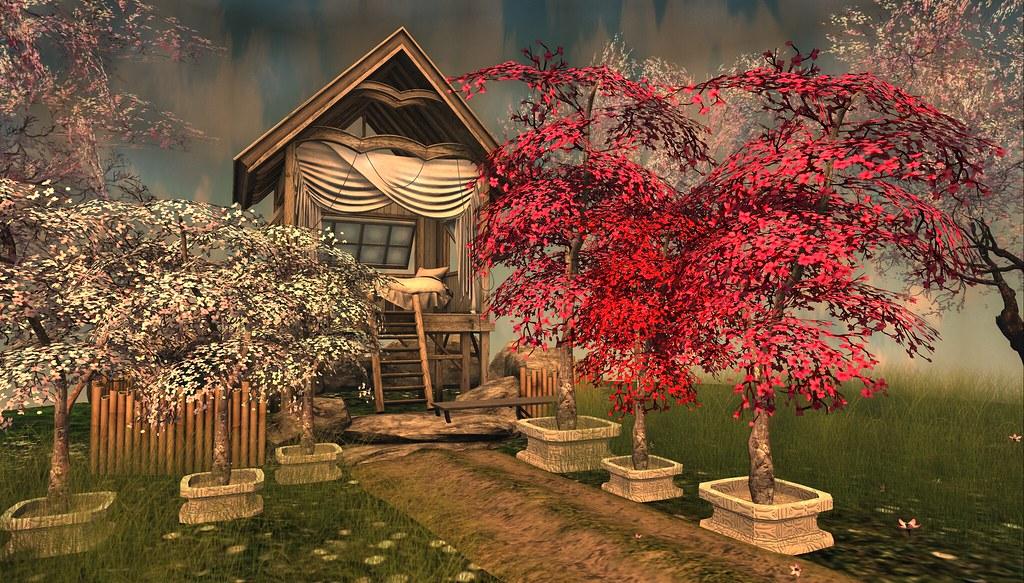 Fill in Cherry Blossom