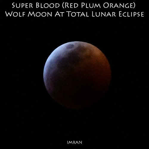 totaleclipse d850 nikon tampabay desire storytelling water sooc moon apollobeach florida love lunareclipse imran colors prose imrananwar fullmoon passion superbloodwolfmoon unitedstates us