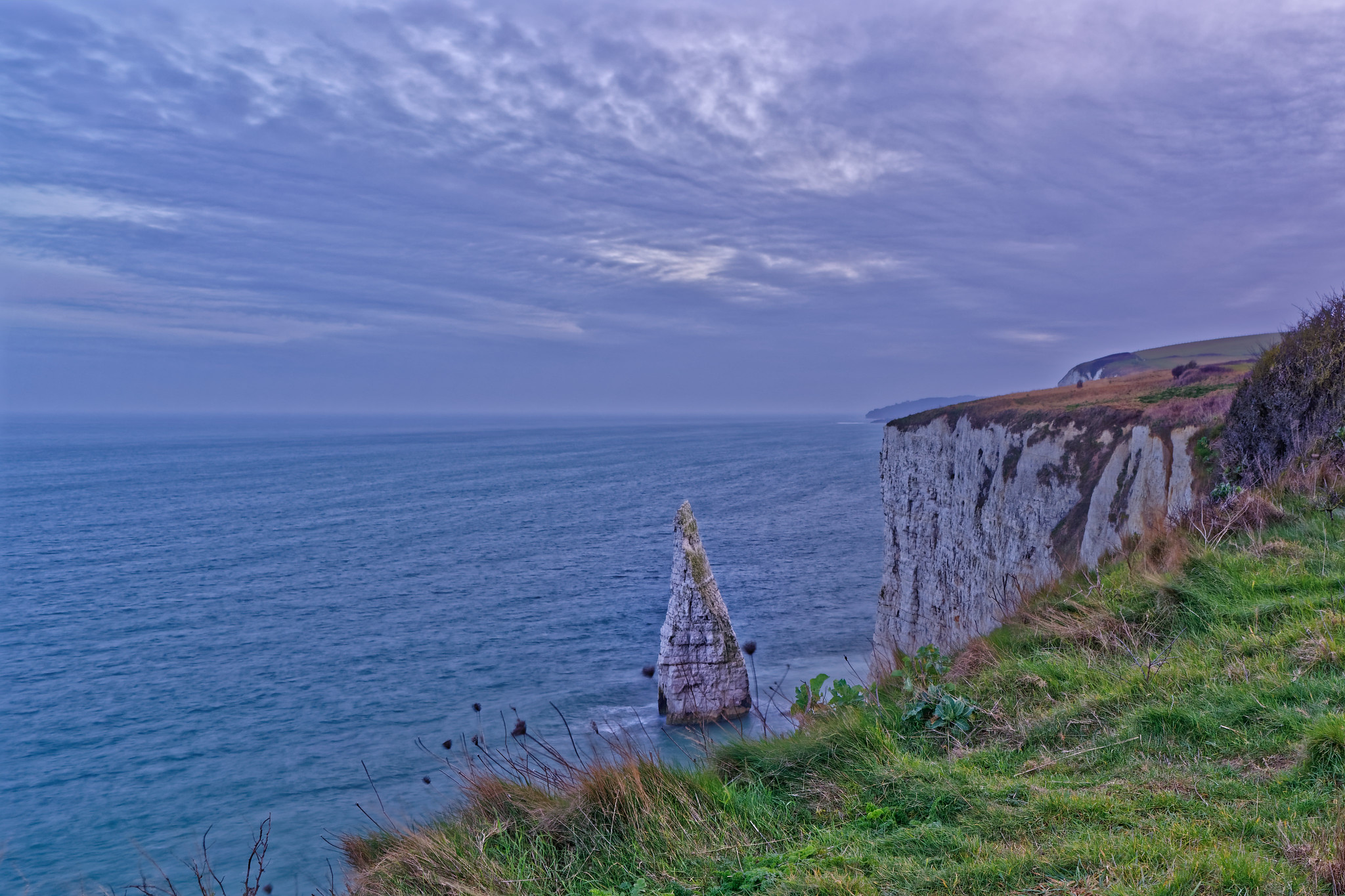 One more from my visit to Old Harry's Rock here in Dorset