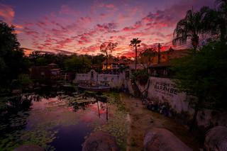 Harambe's Fire Sky   by TheTimeTheSpace