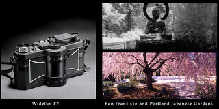 Widelux with images from the San Francisco and Portland Japanese Gardens | by jimhairphoto