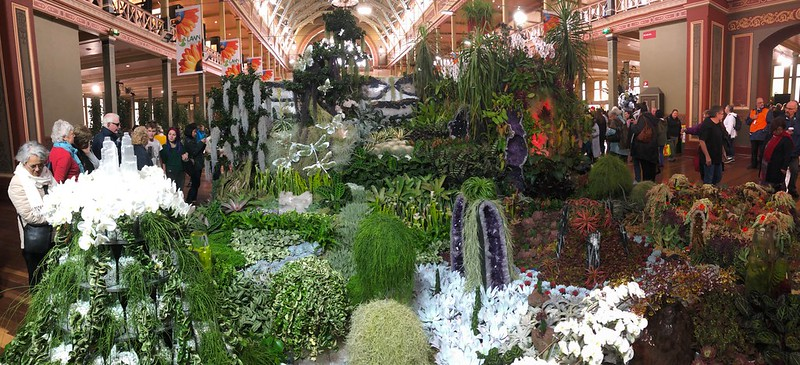 Collector's corner display, Melbourne International Flower and Garden Show.