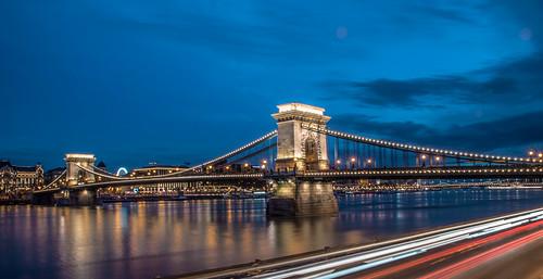 Budapest / Chain bridge blue hour