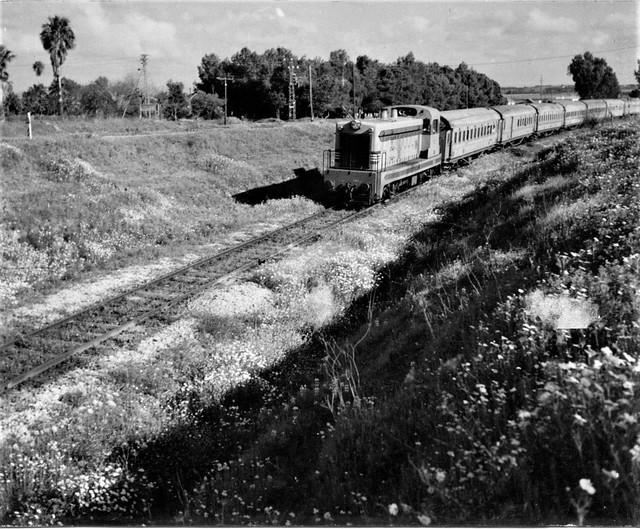 Israel Railways - ISR diesel locomotive Nr. 101 (Société Anglo-Franco-Belge, 1952) and passenger train in the 1950s