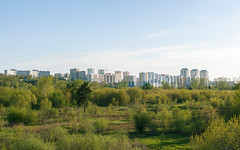 Skyline and green city outskirts