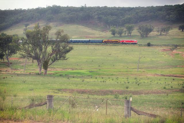 Blue Suede Express Near Molong