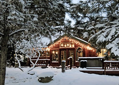 Cabin with Christmas Lights