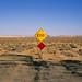 none shall pass. mojave desert, ca. 2011.