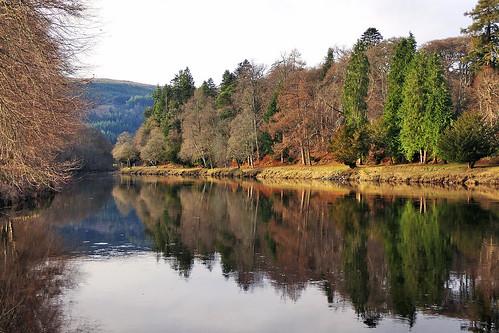 ericrobbniven scotland dunkeld dundee perthshire landscape trees springwatch