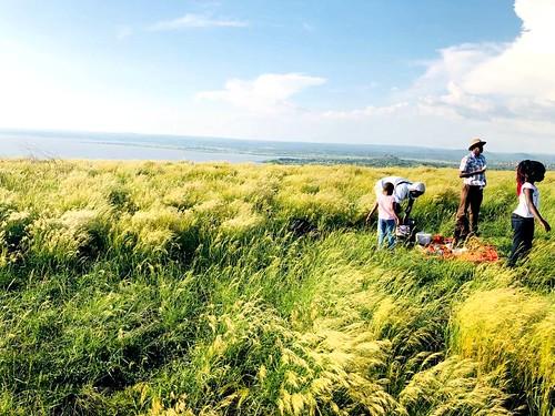 ndere island game national park kisumu county lake victoria winam gulf kenya east africa hike hiking grass rolling hills picnic