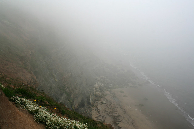 The coast south of Whitby