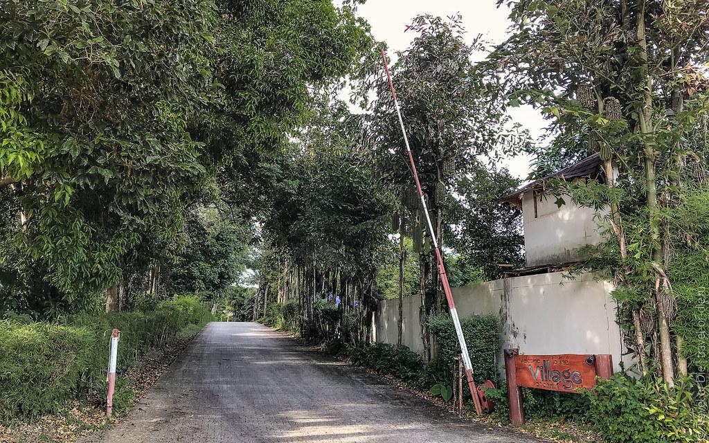 Coconut-Island-Phuket-iphone-0601