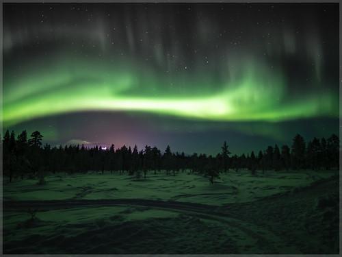 Aurora borealis_93061 | by uwe_cani