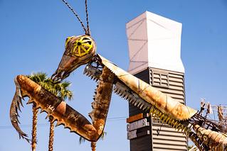 Las Vegas | by Margo BonBon