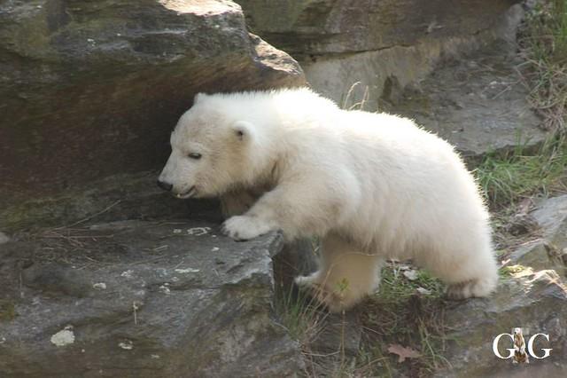 Besuch Tierpark Friedrichsfelde 06.04.2019130