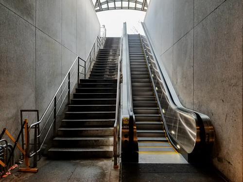 Cleveland Park Metro East Escalator Works! Rejoice!