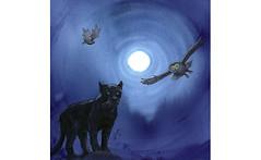 Cherokee Creation Myth 4