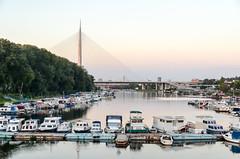 Ada Ciganlija, Belgrad sea