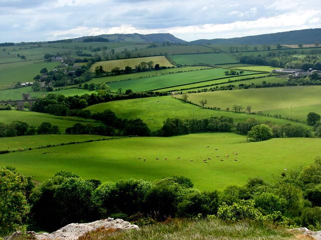Northumberland View (2)