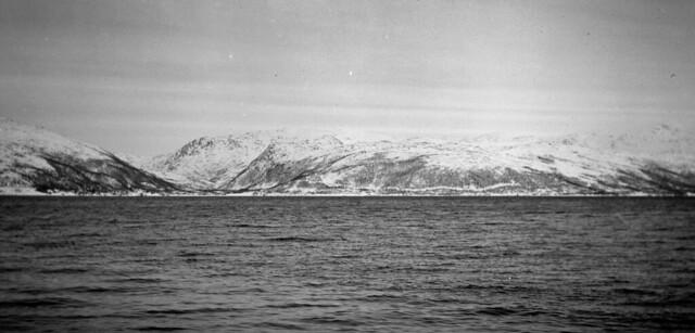 L'artic com en època d'en Shackleton / The Artic as in Shackleton days