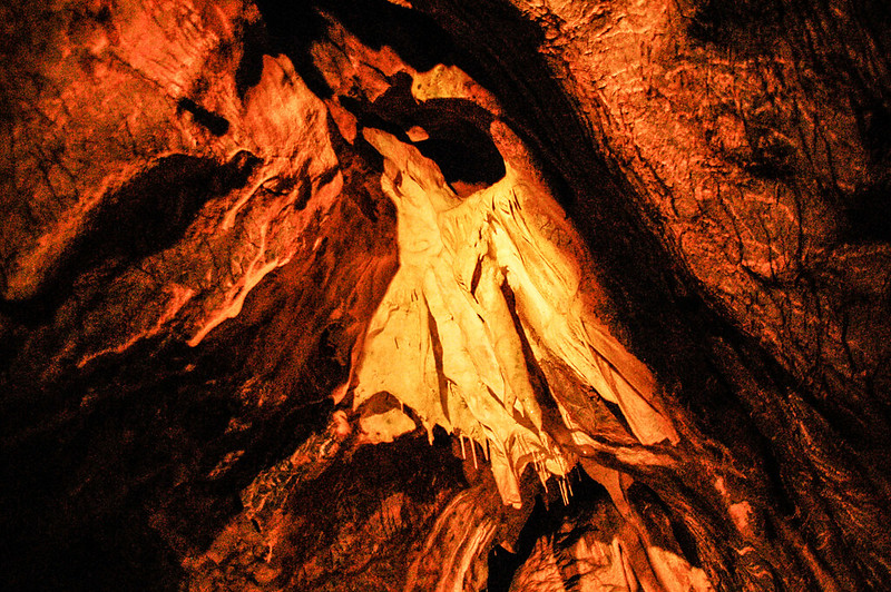 Punkva cave 17