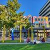 Autumn afternoon in #gardenplace #lovethetron:blue_heart: #library #outdoorgames #kirikiriroa