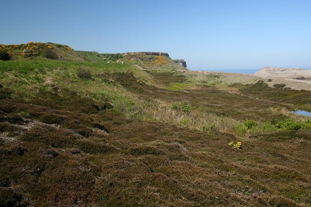 Near Sandsend Ness, North Yorkshire