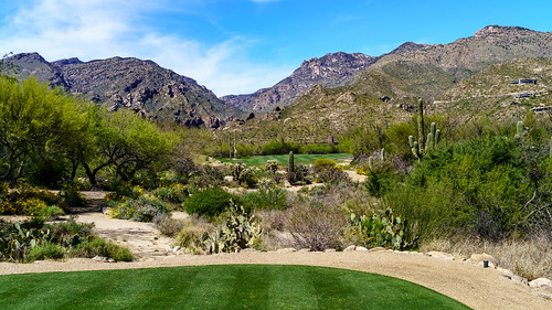 az ventanacanyon a7m3 golf outdoor sony24240mm tucson us