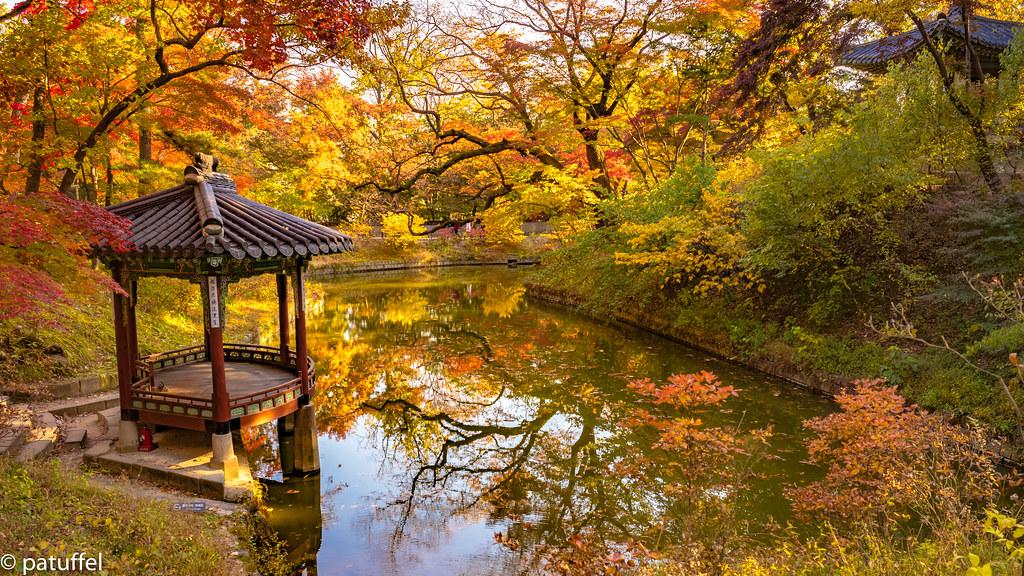 Autumn Atmosphere In The Secret Garden Seoul The Secret Flickr