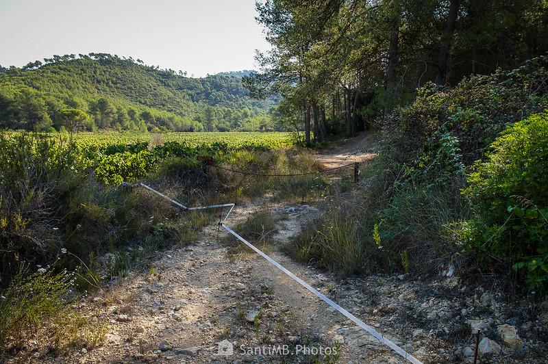 Cruce de caminos cerca de la Roqueta
