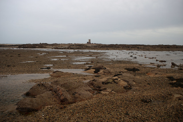 South East Jersey Inter-tidal RAMSAR site