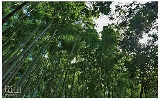 嵐山半日遊-22