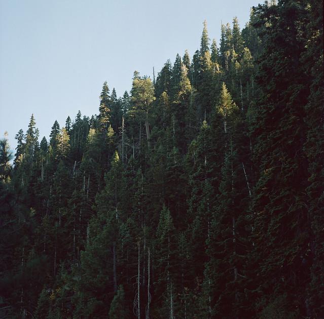 Lake Tahoe // Last in Series