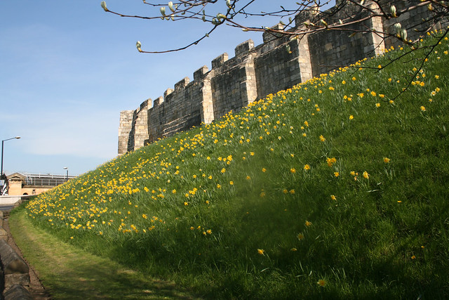 The city walls, York