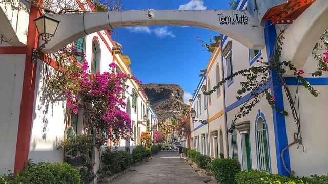 Bougainvillea, Puerto de Mogan, Gran Canaria, Spain - 2202