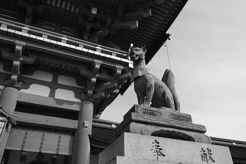 25-02-2019 Kyoto (51)