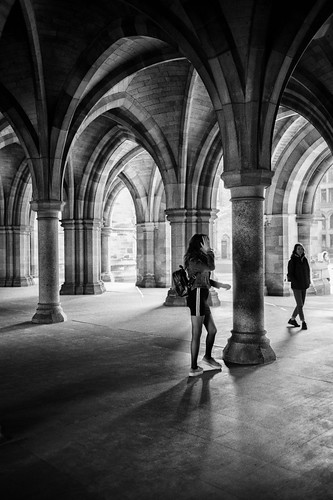 A Cloister Calamity | by stephen cosh
