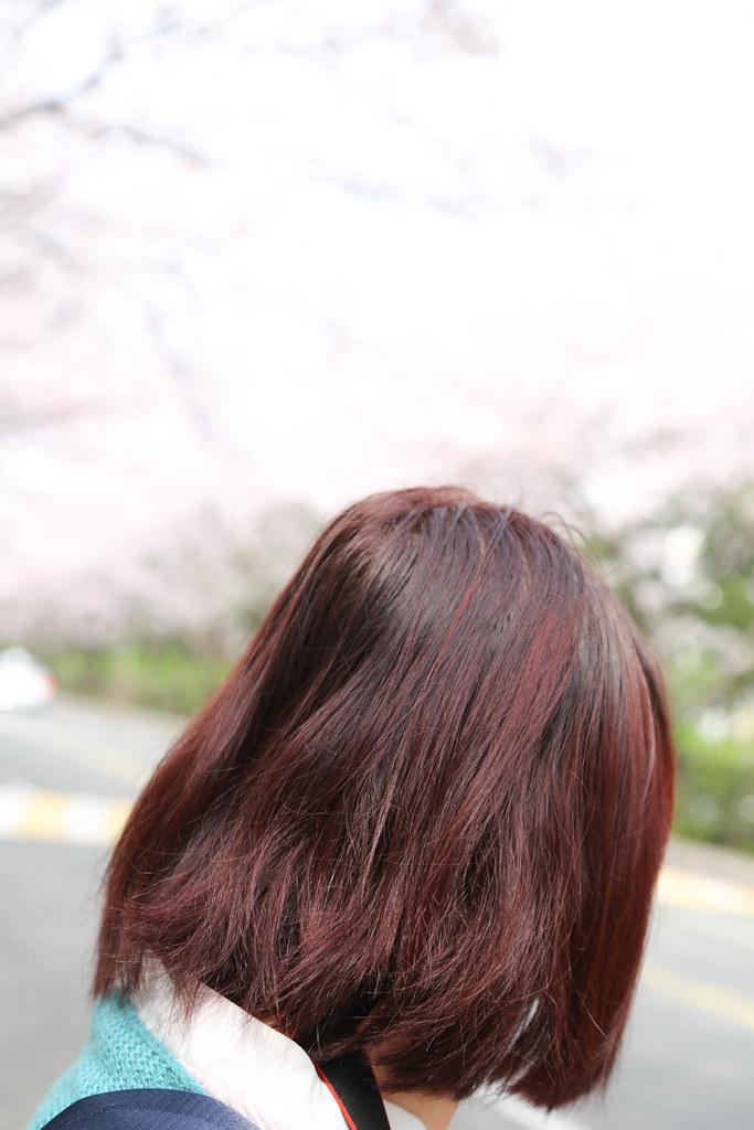 七大界髮廊 (2)
