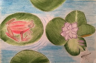 Priyanka-Parmer-17-yrs-old-Frog-on-Lilly-Pad-Jersey-City-NJ-USA