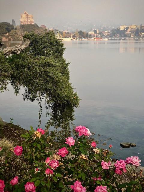 Smoky day at the lake