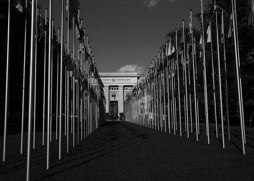 Flags at UN Geneva | by United Nations Photo