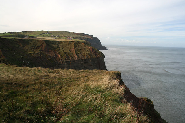 The coast west of Staithes