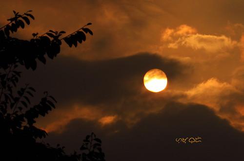 sunset silhouette sky ciel himmel sun clouds canon powershotsx530hs kahel goldenhour outdoor outside nature natur naturaleza naturephotography natural allnatural