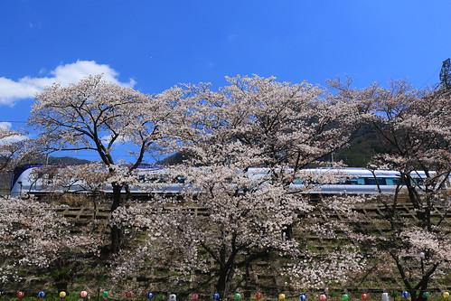 E353系と桜 | by kimuchi583
