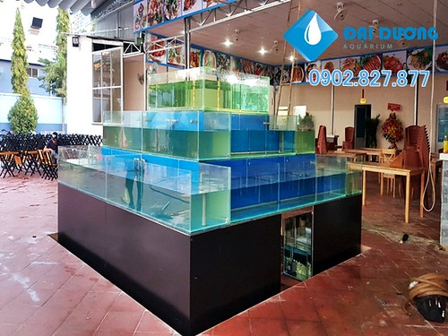 Dàn chứa hải sản nhà hàng phố biển 79   by Hồ cá kiểng Đại Dương